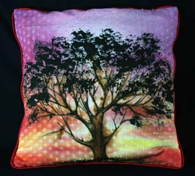 Designer Cushion 02
