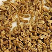 Carrot Seeds Oil