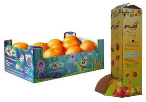 Printed Box for Fruits