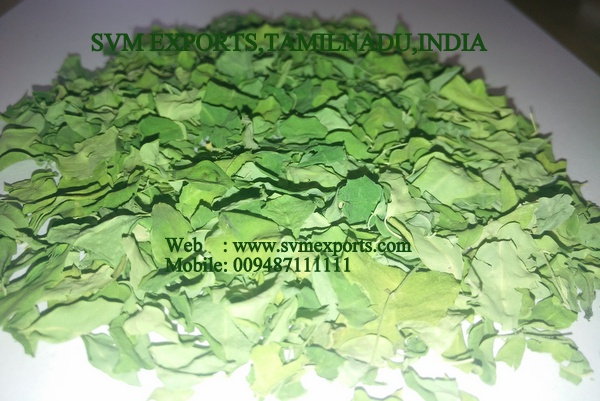 Higenic Moringa Dry Leaves