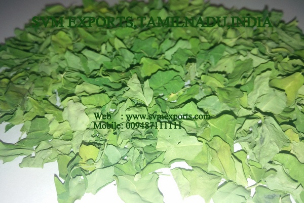 Moringa Oleifera Cut Leaves