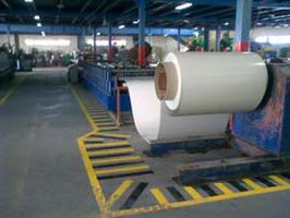 Pre Painted Galvanized Sheets & Coils