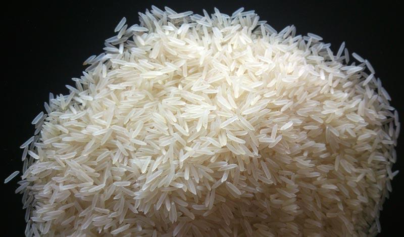 Indian Basmati Rice,1121 Basmati Rice,Basmati Rice Suppliers Raipur
