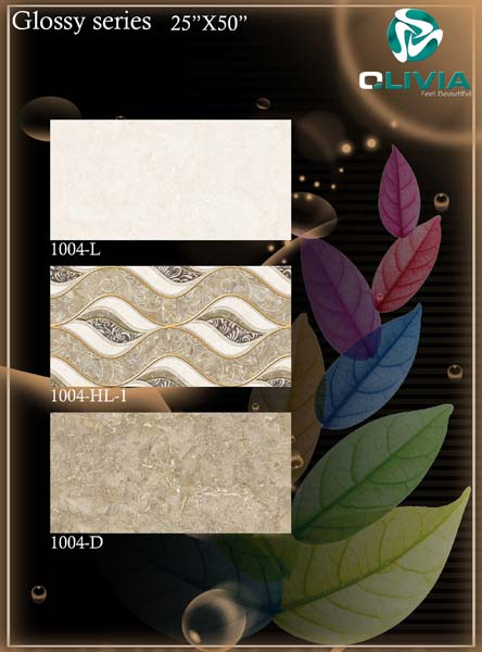 250X500 Glossy Series Wall Tiles