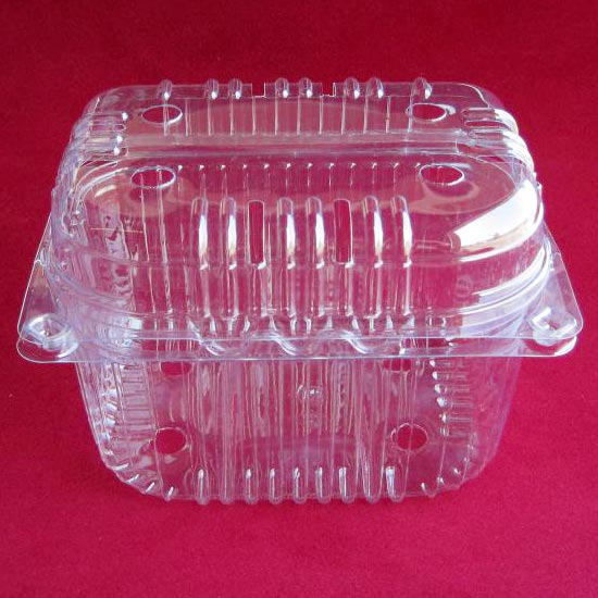 Thermoformed Plastic Containers