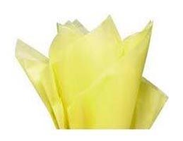 Recyclable Hard Tissue Paper