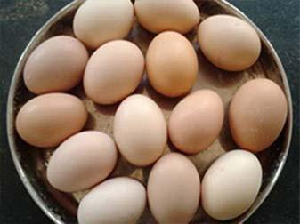 Deshi Eggs