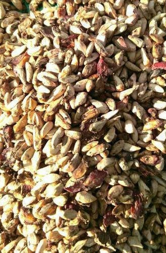 Dried Pomegranate Seeds 01