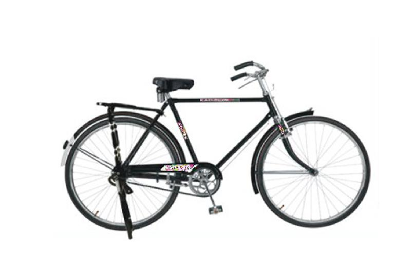 Standard Series Bicycles
