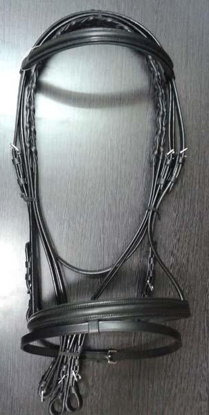 Horse Bridle 03