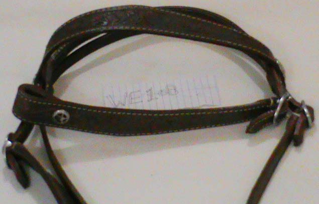 Horse Headstalls P.P 11