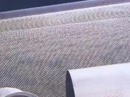 Stainless Steel Wire Mesh (55 mesh)