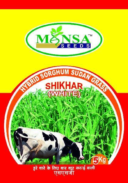 Hybrid Sorghum Sudan Grass Seeds 02