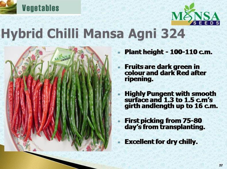 Hybrid Chilli Mansa Agni 324