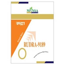 Maize Seeds (Rudra-9189) 02