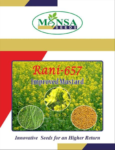 Yellow Mustard Seeds(Rani - 657)