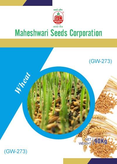 GW-273 Wheat Seeds