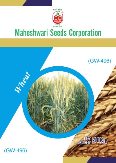 GW-496 Wheat Seeds