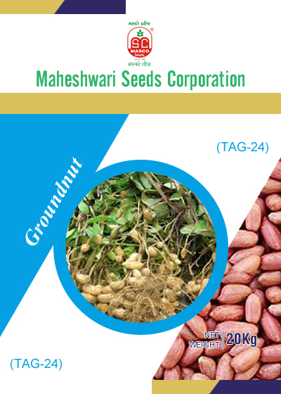 TAG-24 Groundnut Seeds