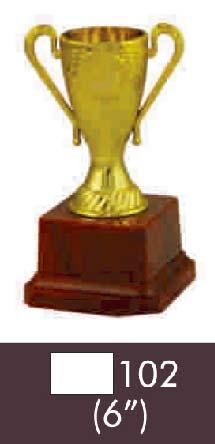 102 06 Inch Trophy
