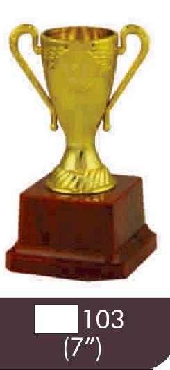 103 07 Inch Trophy
