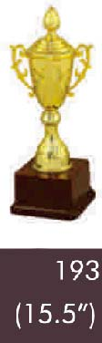 193 15-5 Inches Trophy