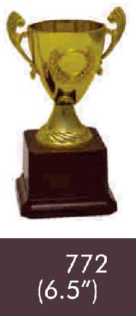 772  06-5 Inches Trophy