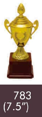 783  07-5 Inches Trophy