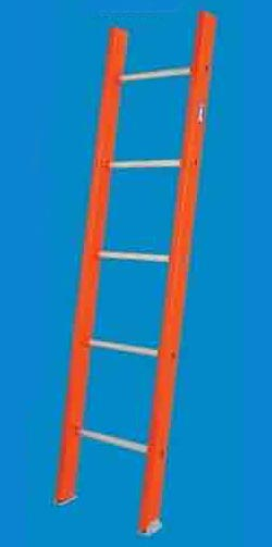 Single Section Ladder 04