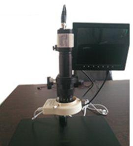 Video Microscope 02
