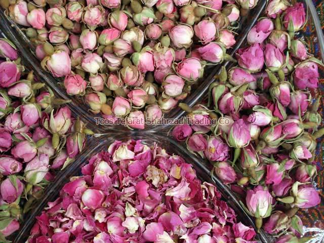 Fresh Rose Petals
