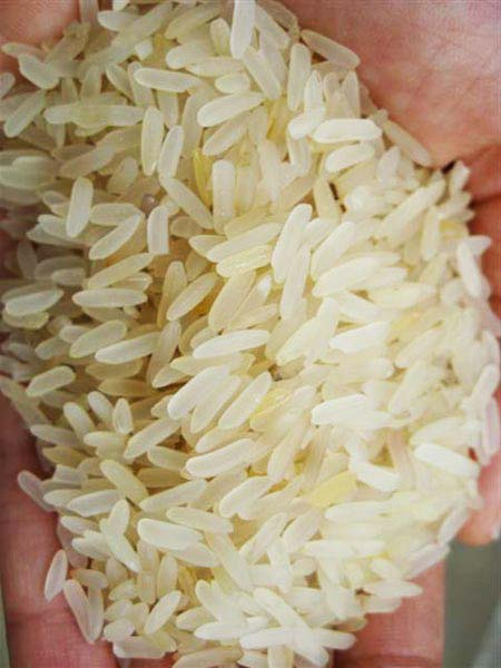 Long Grain Non Basmati Rice