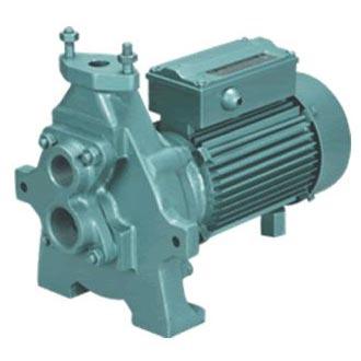 CRI Regenerative Monoset Pump (ARM & ASM Series)