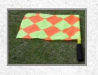Linesman Flag 03
