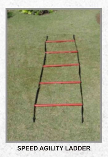 Single Agility Ladder 02