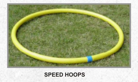 Speed Hoops