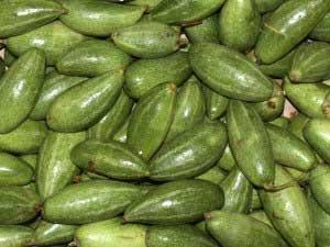 Parwal