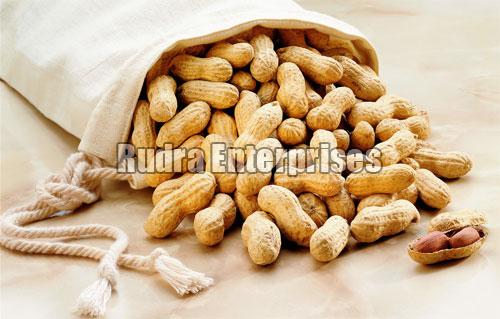 Shelled Groundnut 02
