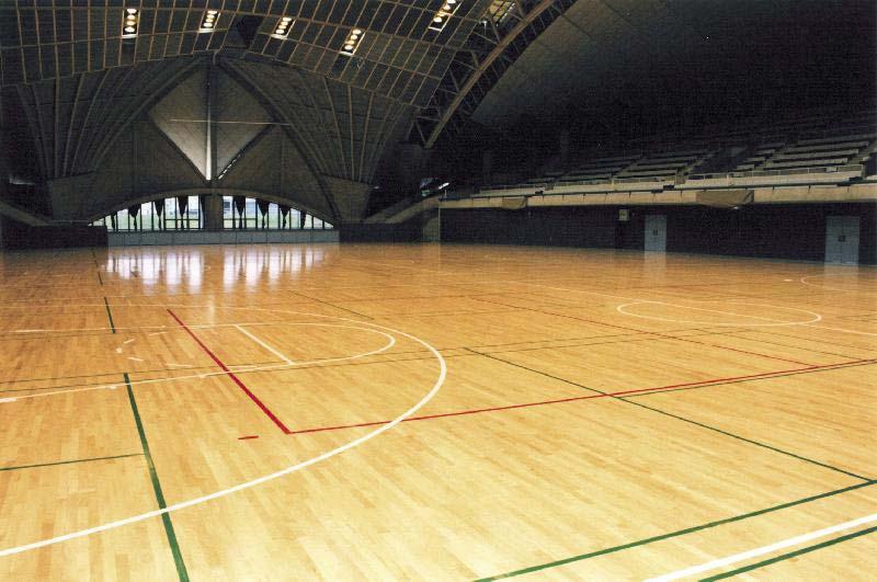 Multipurpose Court Flooring