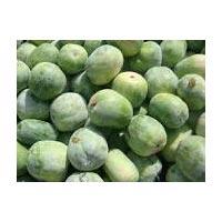 Ash Gourds