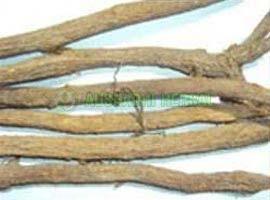 Mulethi Extract