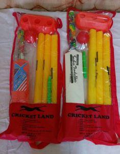 Cricket Kit 2 & 4