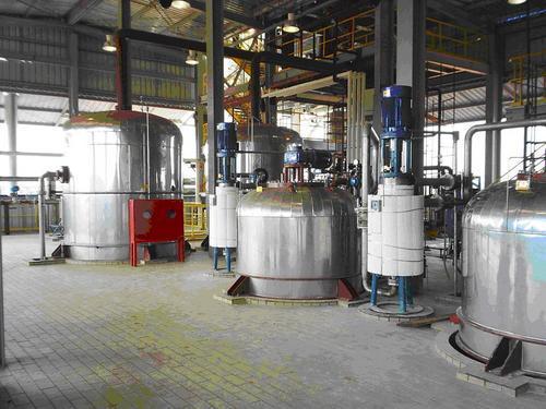 Edible Oil Plant