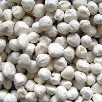 Ben Oil Seeds