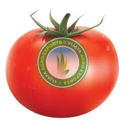 Farm Fresh Vegetables,Fresh Green Vegetables Supplier