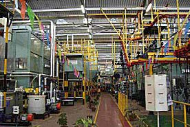 CED Plant 01