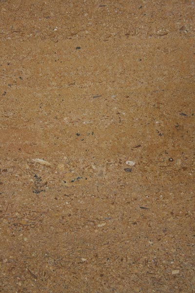 Designo Gold Indian Marble Stone