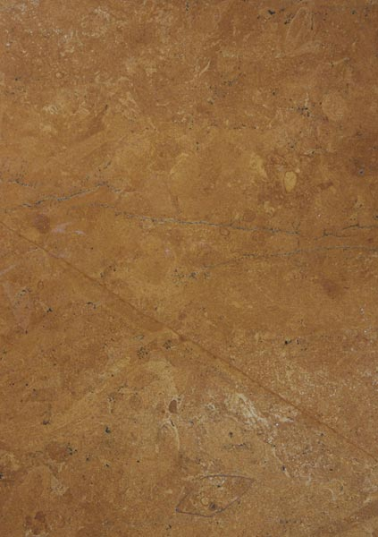 Jaisalmer Golden Flower Indian Marble Stone