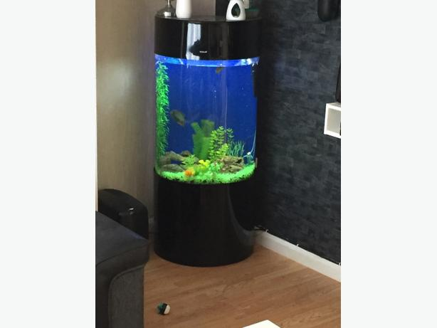 Imported Aquarium,Imported Fish Aquarium,Cylinder Aquarium Supplier