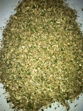 Moringa Cattle Feed